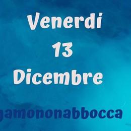 Le Sardine in piazza a Bergamo Il 13 dicembre manifestazione in centro