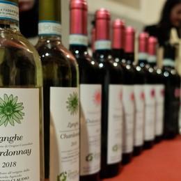 In Città Alta c'è «Vite in libertà» Fiera dei piccoli produttori di vino