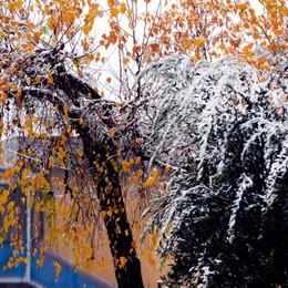 La neve mescola autunno e inverno