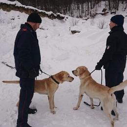 Cani anti droga sulle piste da sci Quattro ragazzi con marijuana e hashish