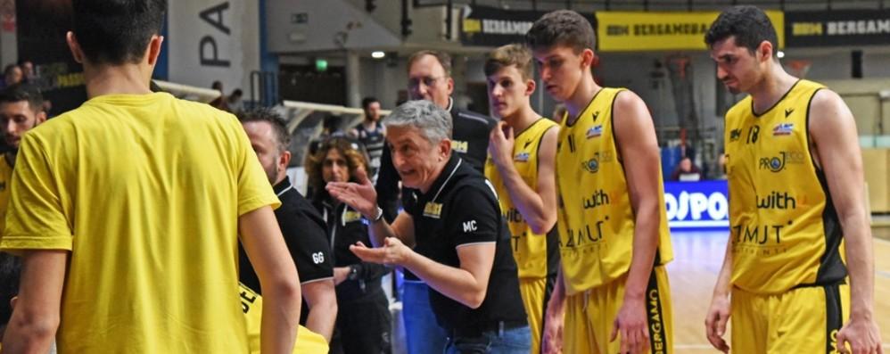 Basket, Bergamo ancora sconfitta Cade in casa anche contro Latina