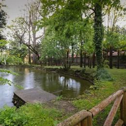 Quattro parchi di Bergamo si rifanno il look  400 mila euro, cosa prevedono i lavori