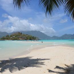 Si sente male sull'aereo per le Seychelles Gravissima donna di Sotto il Monte