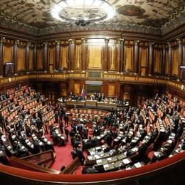 Taglio parlamentari Elezioni più vicine