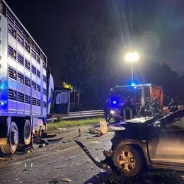 Auto contro un camion di pecore - Foto  Villa di Serio, gravi due bimbi di 4 e 7 anni