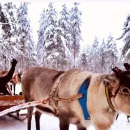 Natale dalle Maldive alla Finlandia Le vacanze dei campioni atalantini - Foto
