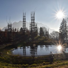 Un anno fa fu semidistrutta dal nubifragio «Ma la Cattedrale vegetale ricrescerà»