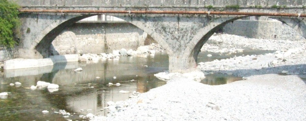 Soglia critica 15 gradi:«Fa caldo sul Serio» Le specie fluviali a rischio di estinzione