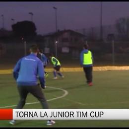Csi - Junior Tim Cup