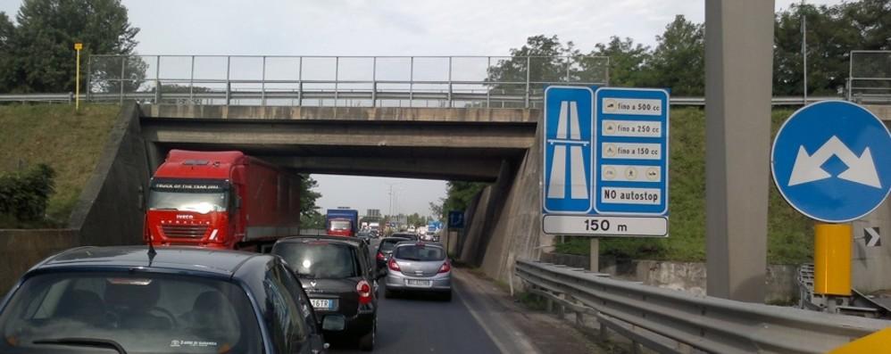 Il giallo dei ponti senza padrone Solo lungo la statale 42 sono 19