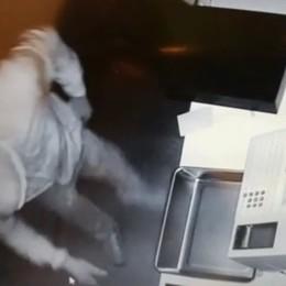 Ladri scatenati a Brusaporto Ortofrutta colpito due volte in un mese