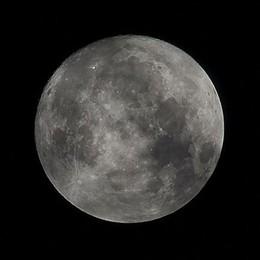 La Superluna più grande del 2019  Spettacolo nel cielo di febbraio
