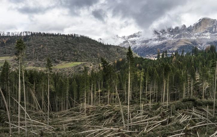 «140 km/h», il vento distruttore nelle foto di Rocco Fidanza