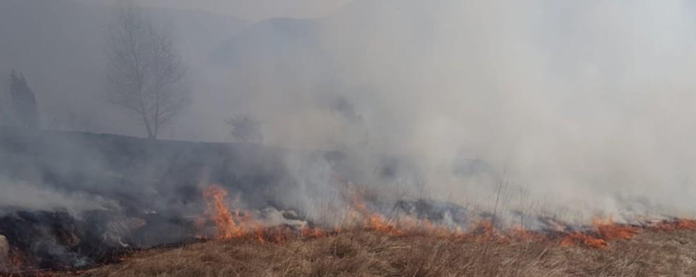 Allarme incendi in provincia di Bergamo Dall'inizio dell'anno già in fumo 13 ettari