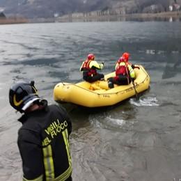Sale sul lago e il ghiaccio di rompe Capriolo muore sul lago di Endine