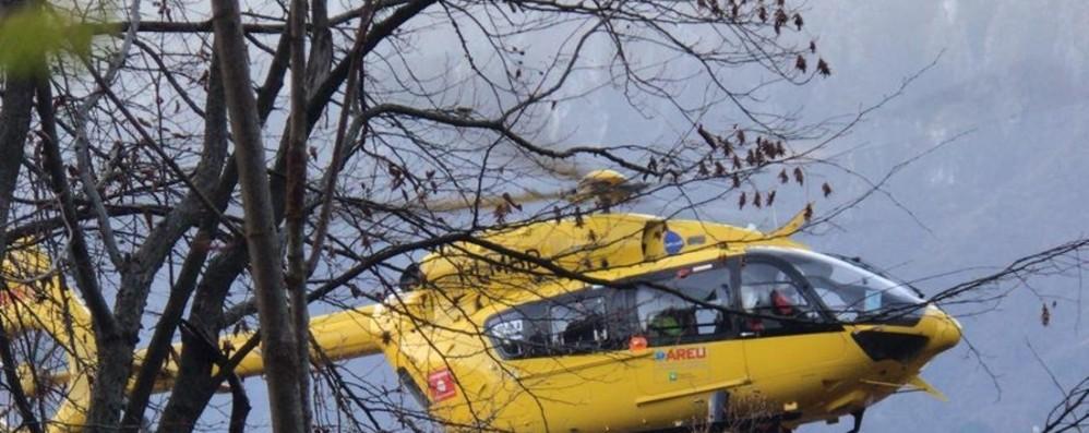 Stava salendo sull'albero con la scala Ferito a una gamba 86enne a Foppolo
