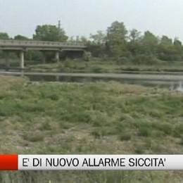 Clima -  Coldiretti: al Nord allarme siccità