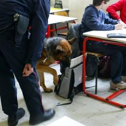 Blitz antidroga nelle scuole a Romano Trovato un ragazzo 17enne con hashish