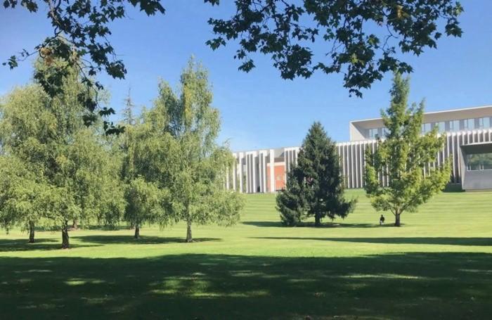 Una grande area verde