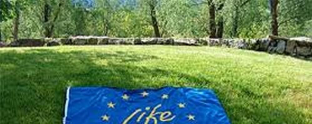 Ambiente: accordo Ue su Programma Life post 2020