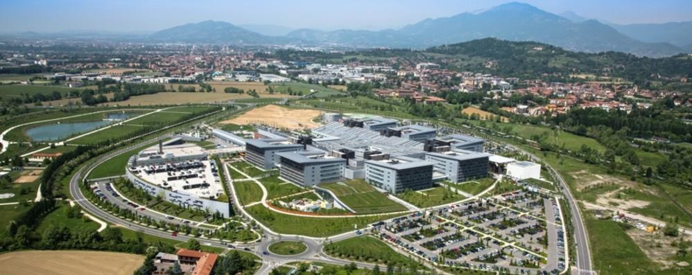 Trapianti, Bergamo prima per donatori E nella top ten nazionale per interventi