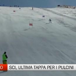Sci, ultima tappa provinciale Pulcini a Foppolo