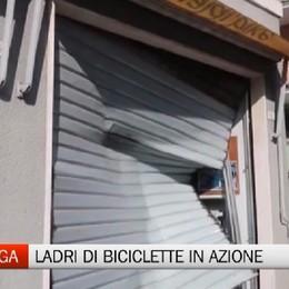 Gazzaniga, ladri di biciclette in azione