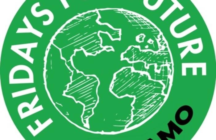 Fridays for future Bergamo: venerdì 15 marzo la manifestazione studentesca