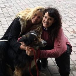 Perde la cagnolina a Firenze La trova 60 chilometri dopo