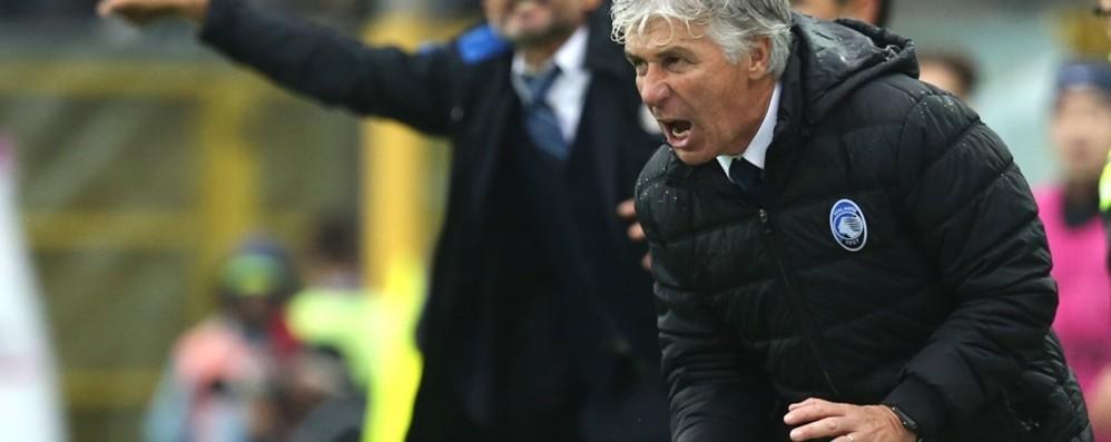 Gasperini, il sogno della Champions  «Fuori dall'Europa? Non ci penso proprio»