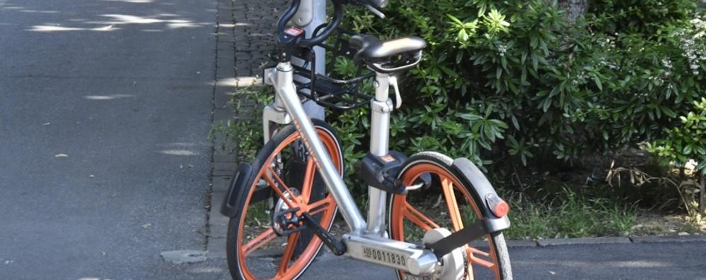 Arrivano le nuove Mobike con ruote grandi e tre marce