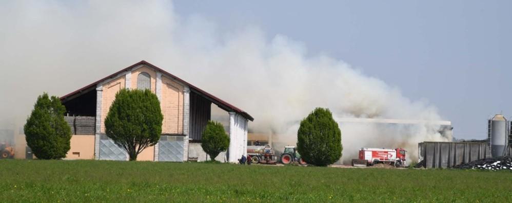 Caravaggio, incendio in cascina - Video  Catena di solidarietà tra gli agricoltori