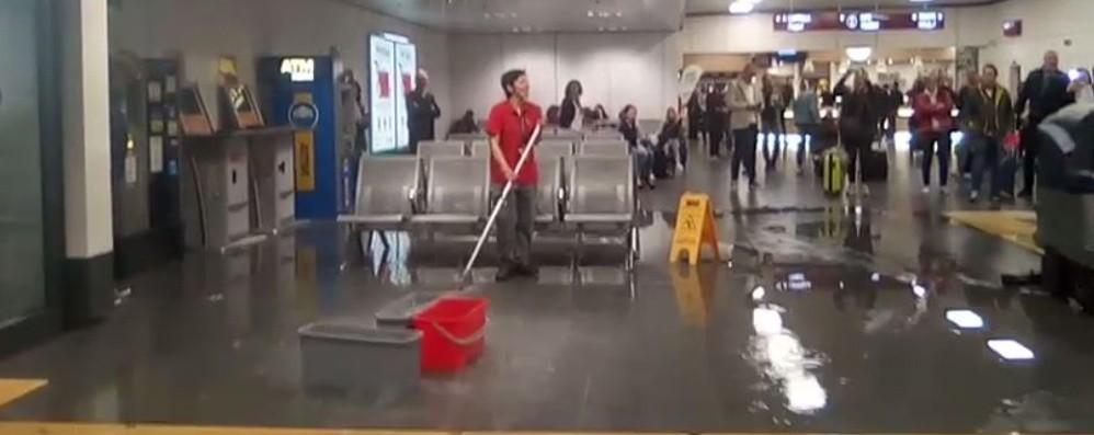 Si rompe grondaia, acqua in aeroporto-Video Maltempo, un volo dirottato su Verona