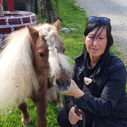«Riportiamo a scuola il pony Patrick» Un appello (e una colletta) a Treviglio