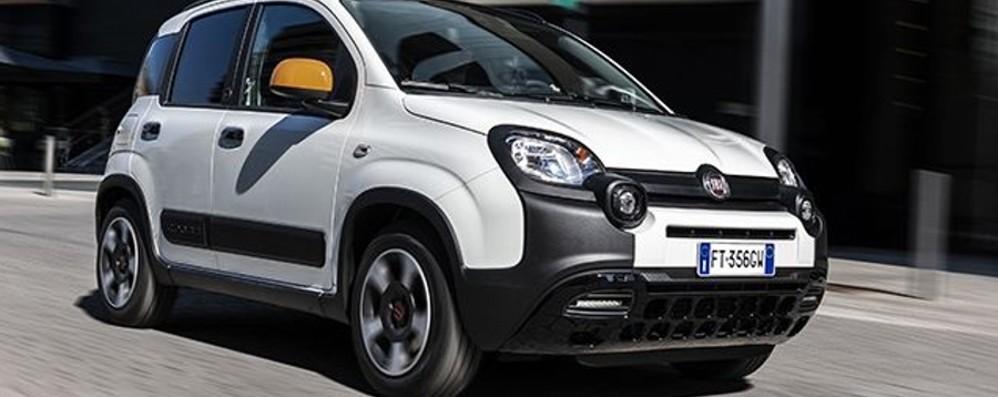 Fiat Panda Nuova serie speciale