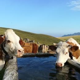 Tanta pioggia e neve nelle valli Finalmente le scorte idriche