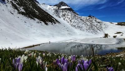 Inverno e primavera
