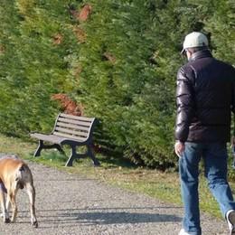 Cani, tutti al parco ma  con rispetto