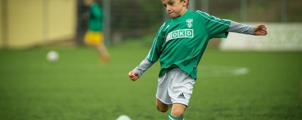 Casnigo, calcio per i baby boys