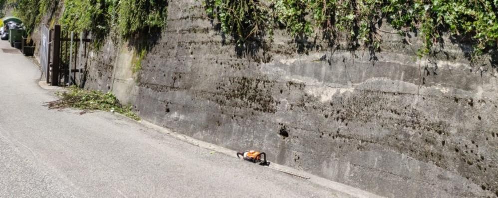 Cade da tre metri mentre taglia una siepe Giardiniere di  43 anni in ospedale