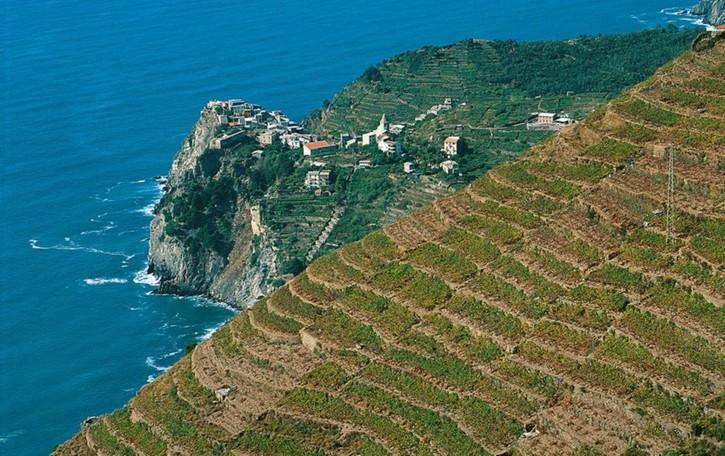 Bandiere blu, Liguria in vetta Ma il Sud è in crescita
