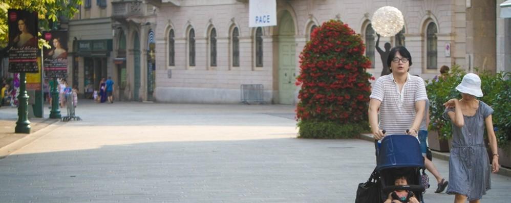 Bergamo: giovani, famiglia e terza età Le ricette dei candidati a Palazzo Frizzoni