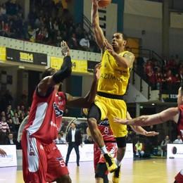 Bergamo e Remer ai quarti di finale  Buone notizie dal basket bergamasco
