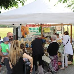 Eco café mapello stand