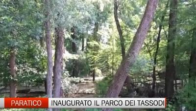 Paratico, il parco dei Tassodi
