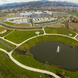 «Pianteremo 20 mila alberi in 5 anni» Bergamo, i progetti della nuova giunta