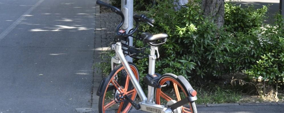 Il 77% degli abbonati al bike-sharing Ha ridotto l'uso dell'auto privata