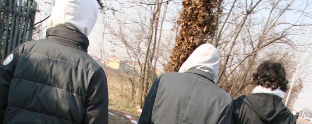Furti e risse: presa baby gang a Romano «Serve l'aiuto delle famiglie»