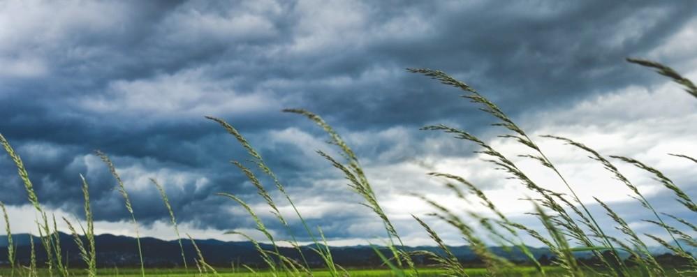 Raffiche di vento caldo in provincia Temporali e grandine nella Bassa