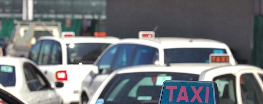 Taxi, tariffa unica Orio-Milano: 120 euro «Cara? A tassametro libero costa di più»